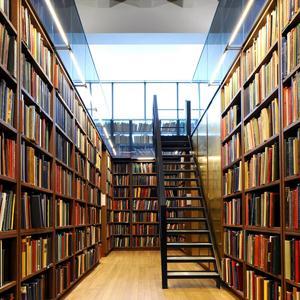 Библиотеки Кизнера