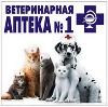 Ветеринарные аптеки в Кизнере